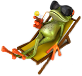 Frog in the summer vacation
