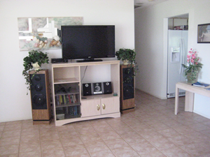 Large LCD TV and entertainment